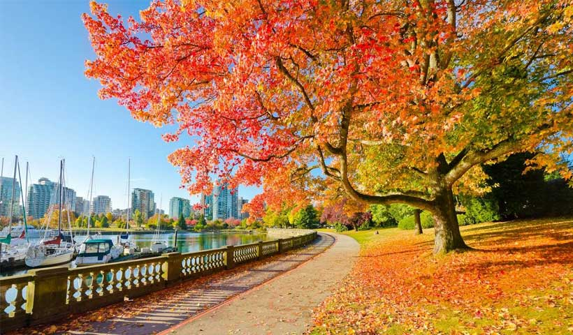 interesting-facts-about-vancouver